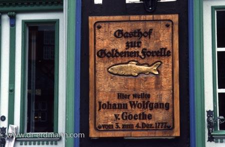 """Gasthof """"Goldene Forelle"""" in Wernigerode am Marktplatz"""