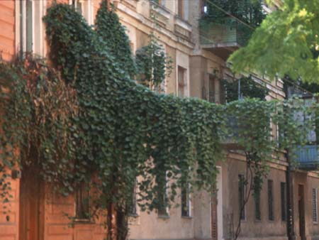 Galinas Stadtviertel